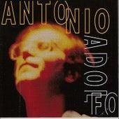 Antonio Adolfo de Antonio Adolfo