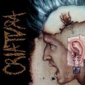 Oídos Sordos a la Estupidez de Criatura