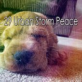 29 Urban Storm Peace by Rain Sounds and White Noise