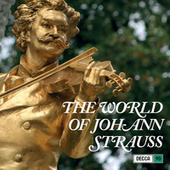 The World Of Johann Strauss di Various Artists