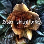 35 Stormy Night for Rest by Rain Sounds and White Noise