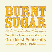 Twentieth Anniversary Mixtapes Groiddest Schizznits, Vol. Three by Burnt Sugar The Arkestra Chamber