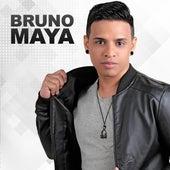 Bruno Maya de Bruno Maya