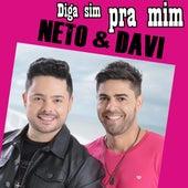 Diga Sim pra Mim by Neto