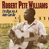 I'm Blue as a Man Can Be by Robert Pete Williams