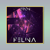 Felina by Orion