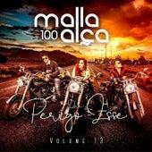 Que Perigo é Esse (Volume 13) by Malla 100 Alça