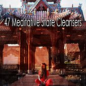 47 Meditative State Cleansers von Music For Meditation