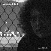 Wounded Bird by The R