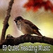 53 Quiet Reading Music de White Noise Research (1)