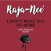 I Don't Want You No More (The Packxsz Remix) de Raja-Nee