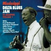 Mississippi Delta Blues Jam in Memphis, Vol. 1 de Various Artists