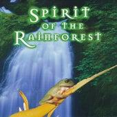 Spirit of the Rainforest by Murdo Mcrae