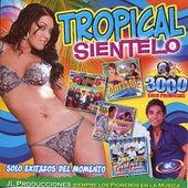 Tropical Sientelo by Various Artists