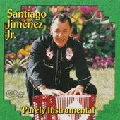 Purely Instrumental by Santiago Jimenez, Jr.
