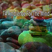 74 Ambience for the Mind by Music For Reading