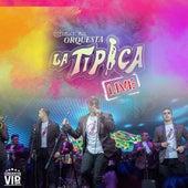 Conciertos Vip 4K: Internacional Orquesta la Típica (Live) de Internacional Orquesta la Típica