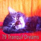 79 Tranquil Dreams de Ocean Sounds Collection (1)
