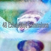 48 Exhausted Extensions de Nature Sounds Nature Music (1)
