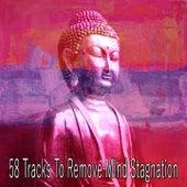 58 Tracks to Remove Mind Stagnation di Yoga Music
