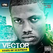 State Of Surprise by Vector