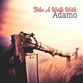 Take A Walk With de Adamo