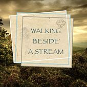 Walking Beside a Stream by Nature Sounds (1)