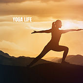 Yoga Life von Lullabies for Deep Meditation