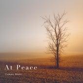 At Peace de Tommy Berre