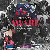 Aware (Remix) by Oshun Ecologyk