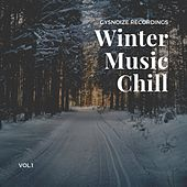 Winter Music Chill, Vol. 1 by Various Artists