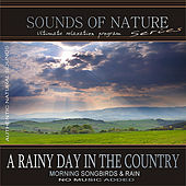 A Rainy Day In The Country (Sounds of Nature: Morning Songbirds & Rain) by Relaxing Sounds of Nature