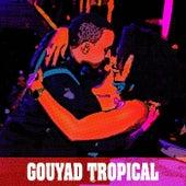 Gouyad Tropical di Momento Mizik