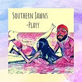 Southern Jawns by Playy