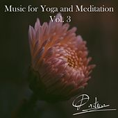 Music for Yoga and Meditation, Vol. 3 by Pontino