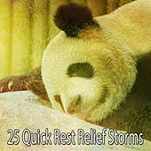 25 Quick Rest Relief Storms by Rain Sounds Nature Collection