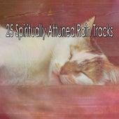 25 Spiritually Attuned Rain Tracks by Rain Sounds and White Noise