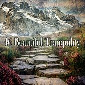 46 Beautiful Tranquility by Musica Relajante