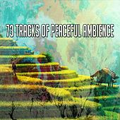 73 Tracks of Peaceful Ambience von Massage Therapy Music