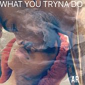 What You Tryna Do by AR