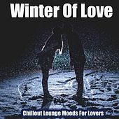 Winter of Love (Chillout Lounge Moods For Lovers) by Polyopia, Soleil Fisher, Medwyn Lindstaed, Lady Tut, Simplify, Hirudo, Misses Smith, Chilhouette, Twenty88, Dark Matter in Aspic, Blue Lagoona, Quatoo