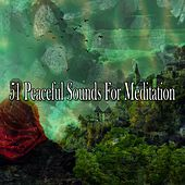 51 Peaceful Sounds for Meditation von Yoga