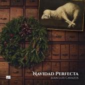Navidad Perfecta de Juan Luis Cavazos