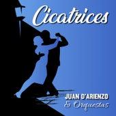 Cicatrices (Tango) de Juan D'Arienzo