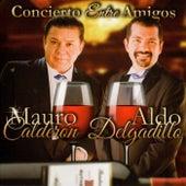 Concierto Entre Amigos de Mauro Calderon