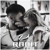 Pse by Rabit