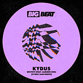 Destiny (feat. Camden Cox) (Kydus 5am Remix) by Kydus