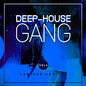 Deep-House Gang, Vol. 4 by Various Artists