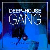 Deep-House Gang, Vol. 4 de Various Artists