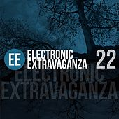Electronic Extravaganza, Vol. 22 by Various Artists